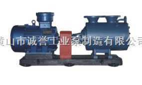 2GRN双螺杆泵