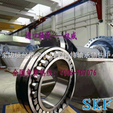 辽宁SKF进口轴承经销商